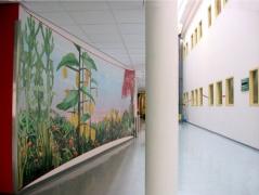 Ingang DP Psychiatrie ,Erasmus MC Rotterdam